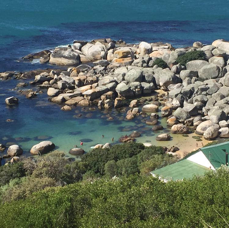 Aline Cara Luna Cape Town